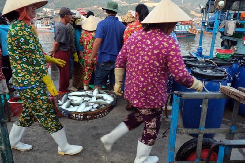 Hoi An Sunrise Fish Market- Hoi An Private Taxi